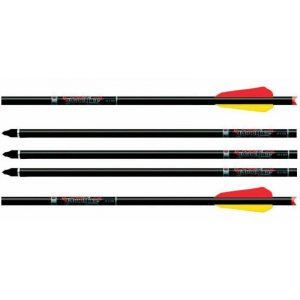 Easton Bloodline Carbon Komplettpfeile (6 Stück)